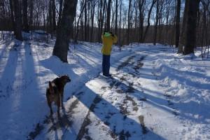 Get ready for a brisk, icy walk