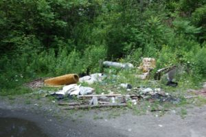 Some people do not care where they dump trash... This photo was taken near the Western Portal of the Hoosac Tunnel